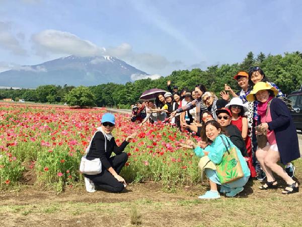 Sắc hoa rực rỡ vào mùa hè Nhật Bản